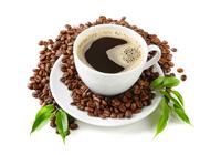 Кофе хауз (Участие в тендере)